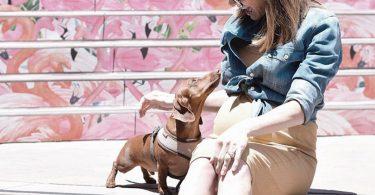 המלצות אופנה בהריון חולצת ג׳ינס